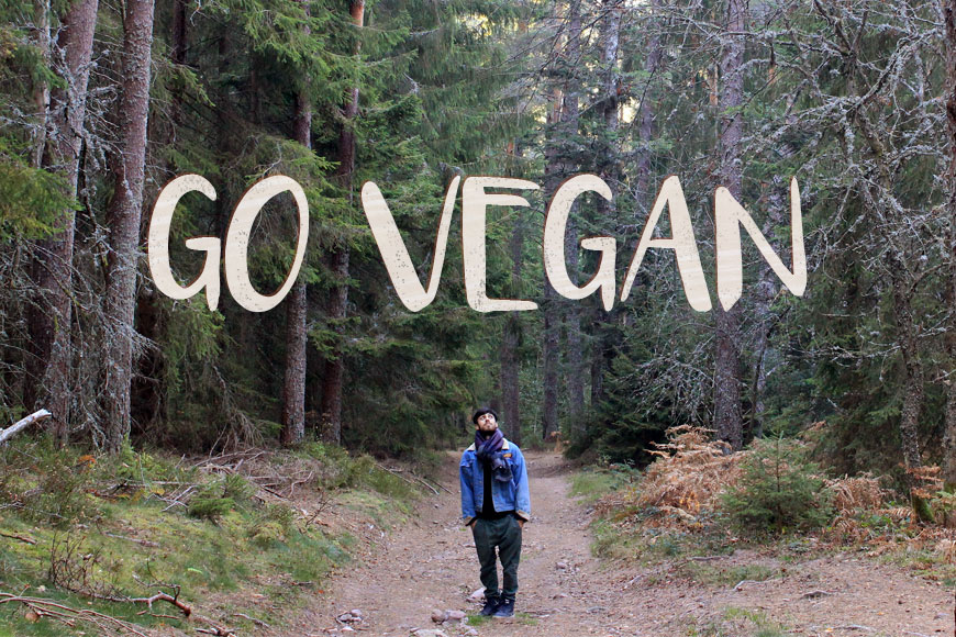 Raphaël, devenu végane en un an - go vegan